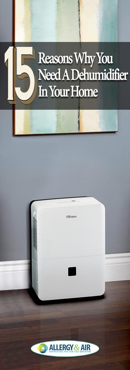 15 Reasons Why Everyone Should Have a Dehumidifier in Their Home
