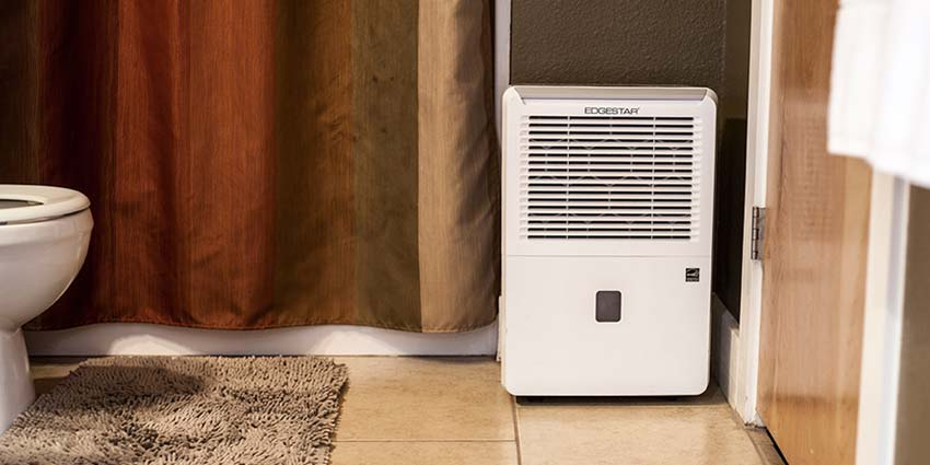 8 Benefits of Owning a Dehumidifier :: AllergyAndAir com