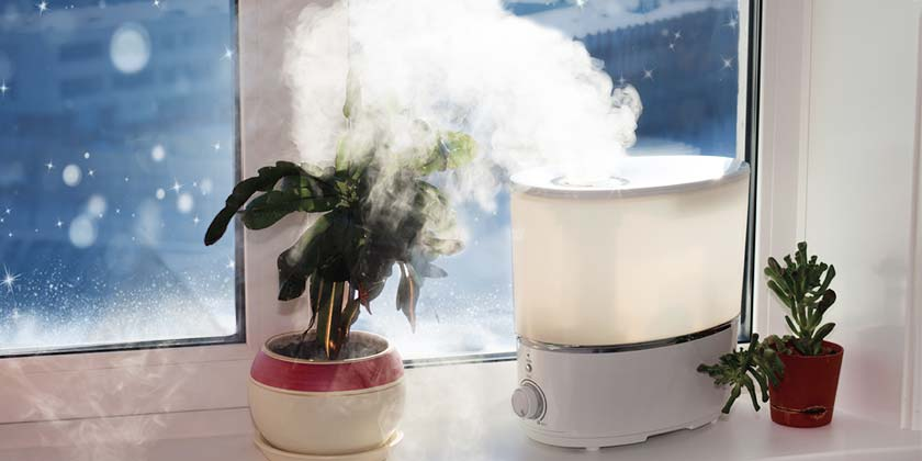 Using a Humidifier in Winter